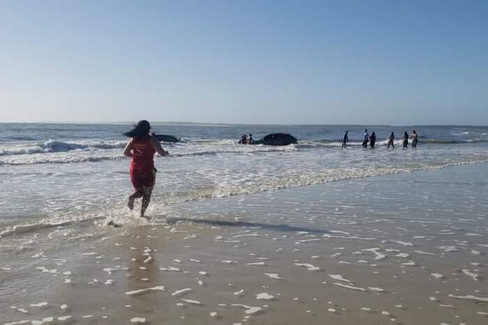Quando a maré encheu os carros que ficaram atolados foram invadidos pela água.